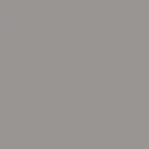 U788 ST9 Арктика серый